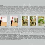 katalog_senator_obl_03